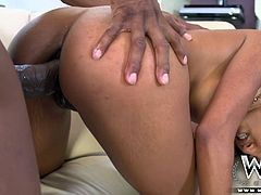 Sadie Santana is one fine ebony petite babe that enjoys anal BBC more that BBQ. She takes on Prince´s prince and stuffs her ass with that junk and takes the load back in her filthy mouth.