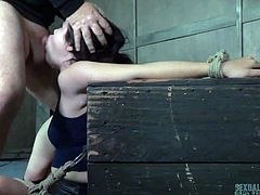Cute young brunette is punished by busty milf in stockings Dee Williams and one perverted dude