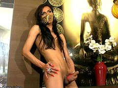 If you like your femboy cuties slender and erotic, well, Leticia has sexy long legs, a nice round ass and thick tgirl cock that she jerks for the camera until she blasts her sticky cum...