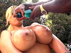 Incredible blonde pornstar with huge boobs gets wrecked hard in a fantastic interracial anal action. Amazing babe with a big ass gets her wet snatch and asshole destroyed by a big black cock in manny positions as she screams for more action.