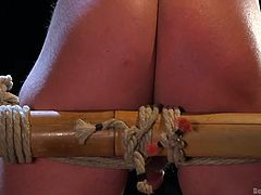 Do you love to tie up a guy and make him submit to your will? If that's the case, welcome to Bound Gods. Join us and watch sexy, muscular studs get dominated hard, as they get tied up and fucked mercilessly. Perhaps you don't want to dominate, but to be tied up and used as a sex slave instead?