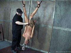 Tattooed black babe Nikki Darling, is willing to suffer for the ultimate sexual pleasure. With her black hair in braids, she hangs upside down, her neck enclosed in a noose, and gets her wet, hairless pussy stroked with a vibrator. Bending over a cage, holding another slave, she awaits a spanking.