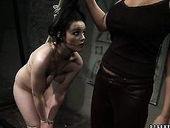 Brunette Mandy Bright with giant boobs licks Estellas pussy hole like it aint no thing in steamy les