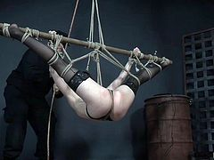 She looks like a butterfly entangled in the webs of a huge spider and no one will come to her rescue. All this stuff may look terrifying, but she feels herself good, as we can judge from the blissful expression of her face and her soft moans. Join and enjoy hard rope bondage!