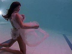 White moth in a dress underwater
