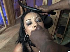 And here you can see her big tits pouring out of her black corset as she bites down hard on a rubber bit while her pussy gets stuffed to capacity by a big, thick black dick. When Malia climbs on top of his pole, you can see her face grimace as she urges her pussy to stretch to new and uncharted limits.