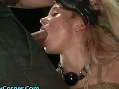 Oh man, this guy really likes fucking and humiliating young sluts really rough, he gagged this cute crying 18yo blonde with his really big fat cock while she was tied up on some kinky fucking machine, he is into some really fucked up stuff! She was fully tied up and the more that machine vibrated in her pussy the more she was jizzing and he fucked her pretty face with his giant cock super hardcore making her scream and cry, well, if you want to become a pornstar you have to take it hard!