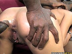 French Lou Charmelle loves big black dick. Jon Jon and Wesley Pipes included talking about French customs and interracial sex. Lou Charmelle gets double penetrated like a champ...