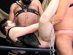 Chubby leather bear cums in bareback trio