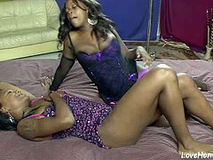 These lesbian girls love to pleasure each other with toys and oral acts.