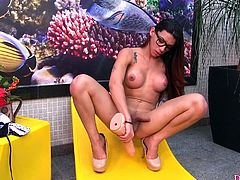 Horny shemale sucks a big dildo and rubs it between her tits She plays with her dick and make it super hard Then fuck her ass with that thick dildo in many positions