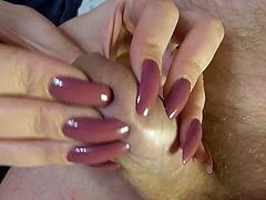 Long Nails Pant Scratch and Handjob