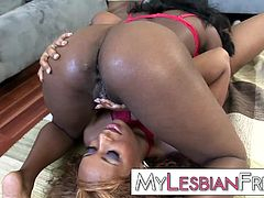 Black lesbian sistas fuck eachother with dildos before giving some good pussy licking and toe fucking