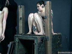 Eden is the one bound and tortured, thanks to a dedicated executor and his helper, the lovely Luna. She smiles as she's humiliated and hurt, even when she's put into the very small cage. This is the kind of good time she truly enjoys.