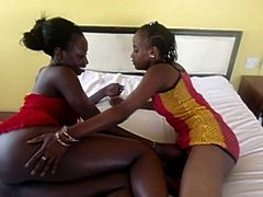 Strapon wielding lesbian African girls make the most of their night in a hotel paid for by their company. They fuck pussies with a big strapon all night long.