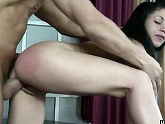 Brunette sex goddess getting plowed from the back doggystyle