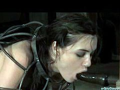Sasha Grey Like Pain