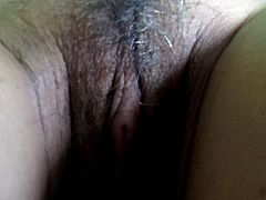 Sex Tube Rate