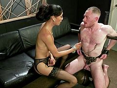 Asian shemale goddess Venus is really mean to her slave. After sticking her feet in his face, she humiliates him and makes him suck on her big juicy shecock. This mistress is going to cum in his mouth.