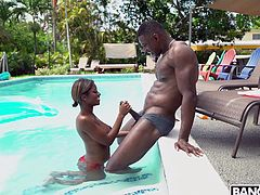 Lola Chanel, busty chocolate beauty, easily seduced this muscular handsome guy and allowed him to lick her pink pussy. As gratitude, she happily sucked Jaxxx's big and juicy black penis, before... Join and enjoy impetuous sex action!