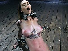 It's time for Rocky Emerson to test her sexual limits with device bondage and rough tortures, and our cruel executor will eagerly help her. This hot helpless women versus hard metal bondage... Sounds Good?! Join, relax and have fun!