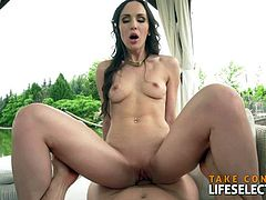 LifeSelector - Family Treats