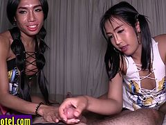 Two ladyboy Asians jerk off and sucked cock by a guy